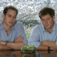 Screencap - Princes William and Harry in the rainforest video