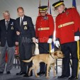 The Earl of Wessex presents the dog to the RCMP