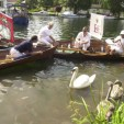 Swan Upping on Thames