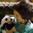 Queen Sofia craddling one of the baby pandas