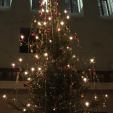 The Christmas tree at Fredensborg, from Crown Princess Pavlos's Instagram