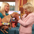The Duchess of Cornwall plays with guide dog in training Clover on the set of 'This Morning'; 09-09-2015