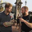 Prince Harry chats with one of the Walk of Britain trekkers upon their arrival to Buckingham Palace; 01-11-2015