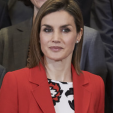 Queen Letizia during an audience at Zarzuela Palace; 26-01-2016