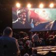 Kongens Nei screening in the royal park