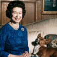 The Queen and one of her corgis