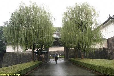 Click image for larger version  Name:Japan 2005 14000.jpg Views:582 Size:150.4 KB ID:204061