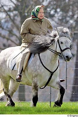 Click image for larger version  Name:Windsor 17 april 2006.jpg Views:208 Size:47.7 KB ID:238811