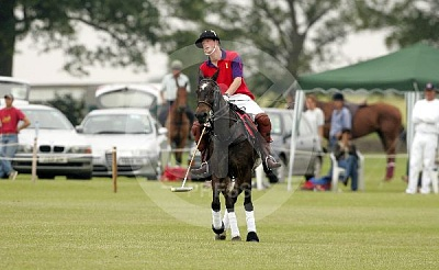Click image for larger version  Name:Harry_Beaufort_Polo_12-UKP.jpg Views:136 Size:41.2 KB ID:250119