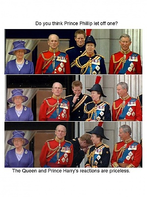 Click image for larger version  Name:Prince Phillip.jpg Views:318 Size:117.5 KB ID:262322