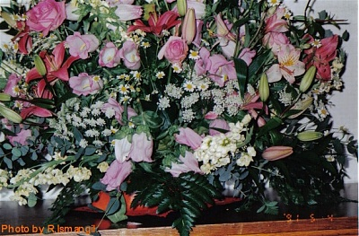 Click image for larger version  Name:Royaltys flowers 11.jpg Views:305 Size:101.4 KB ID:266903