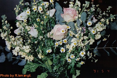 Click image for larger version  Name:Royaltys flowers  12.jpg Views:296 Size:90.4 KB ID:266904
