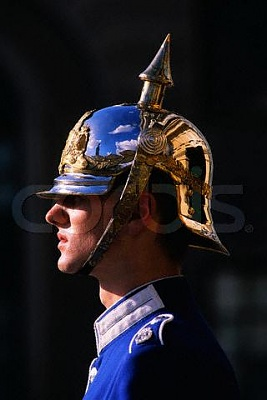 Click image for larger version  Name:royal guard.jpg Views:465 Size:19.7 KB ID:267179