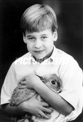 Click image for larger version  Name:BUNNY.jpg Views:178 Size:18.7 KB ID:35289