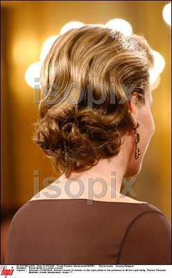 Click image for larger version  Name:hair2.jpg Views:243 Size:26.8 KB ID:51061