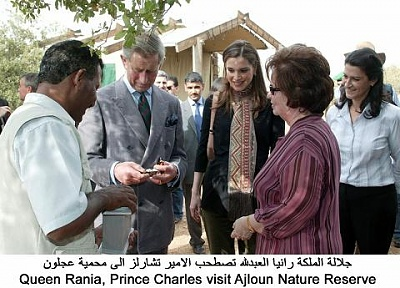 Click image for larger version  Name:ch ajlun4.jpg Views:234 Size:40.3 KB ID:52039