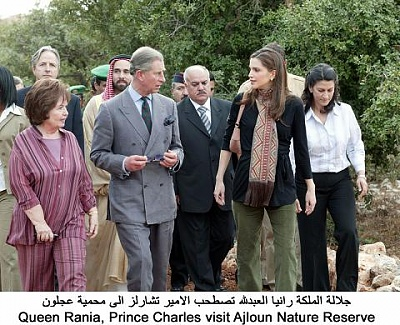 Click image for larger version  Name:ch ajlun3.jpg Views:245 Size:53.0 KB ID:52040