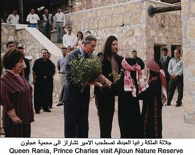 Click image for larger version  Name:ch ajlun7.jpg Views:224 Size:40.3 KB ID:52042