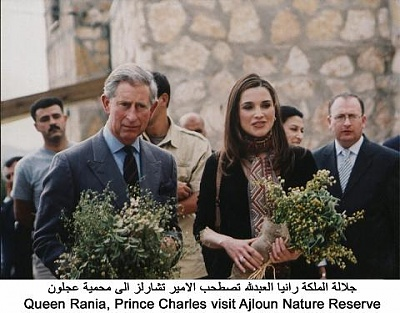 Click image for larger version  Name:ch ajlun.jpg Views:242 Size:36.2 KB ID:52043