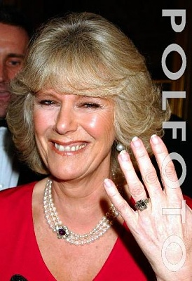 Click image for larger version  Name:Camilla ring.jpg Views:723 Size:34.4 KB ID:92363