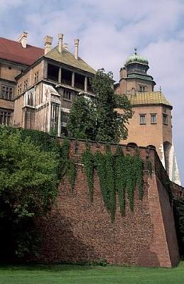 Click image for larger version  Name:Wawel Castle Krakow 05.jpg Views:295 Size:36.2 KB ID:93358