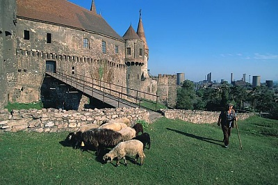 Click image for larger version  Name:Corvinesti Castle 03.jpg Views:321 Size:63.8 KB ID:94421